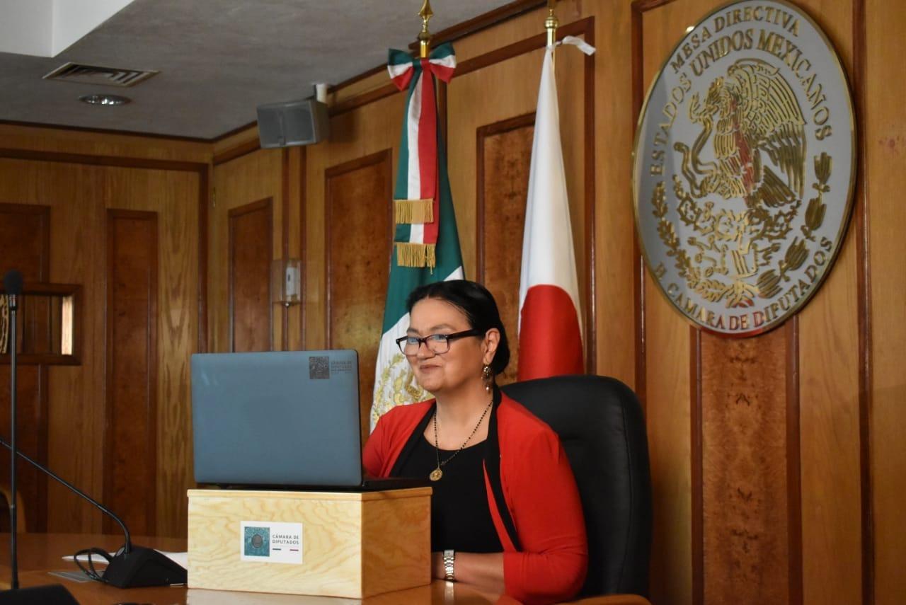 CÁMARA DE DIPUTADOS / Necesario mantener y fortalecer la diplomacia parlamentaria: Sauri Riancho